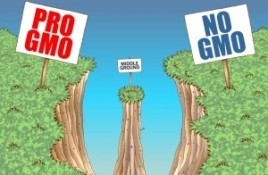 gmo-signs-300x196-300x196